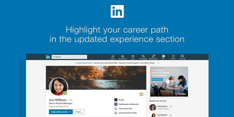 Shine a Light with LinkedIn Career Path